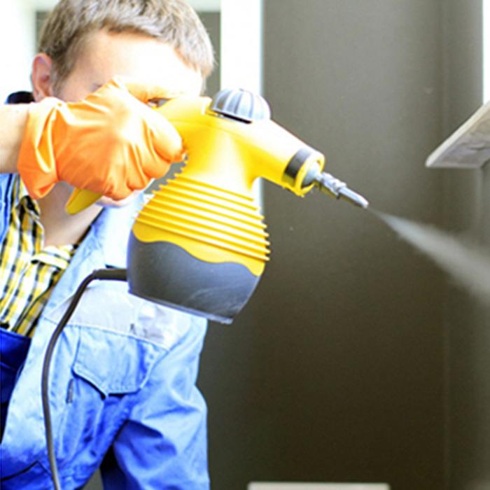 Результативные способы борьбы с тараканами: как защитить собственное имущество